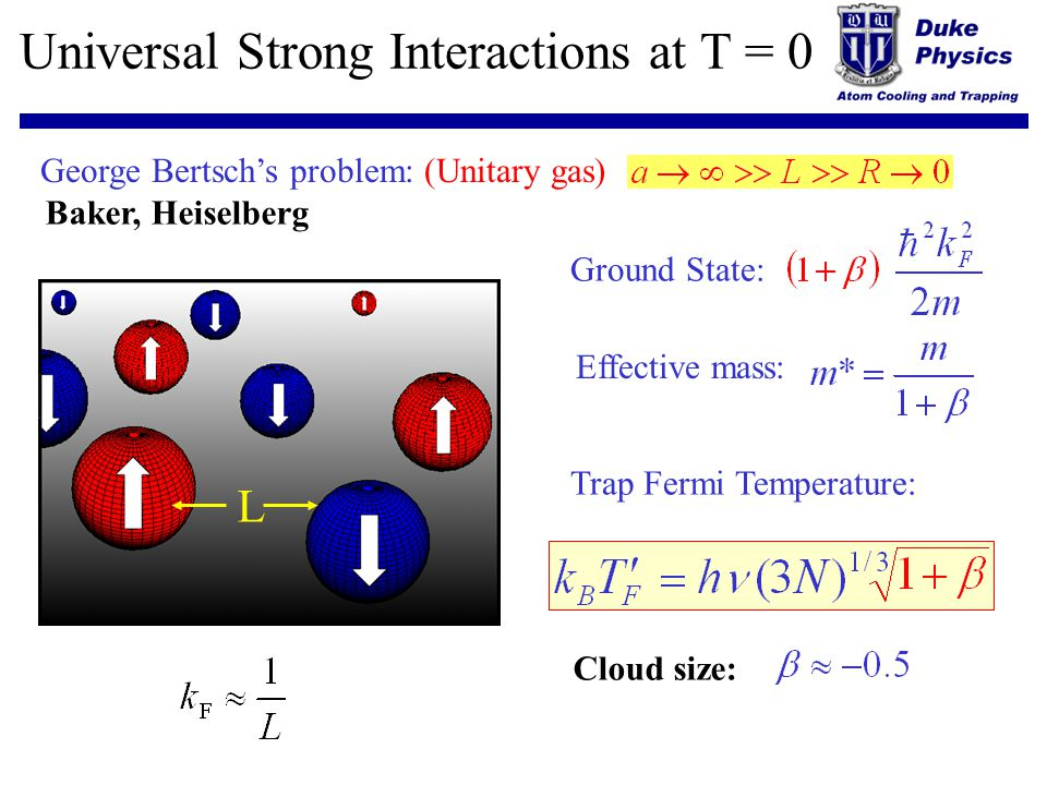 Universal Strong Interactions at T = 0