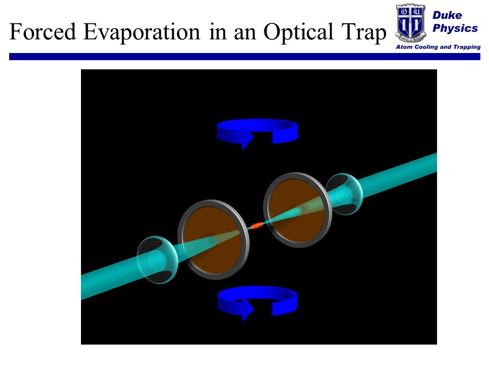 Forced Evaporation in an Optical Trap