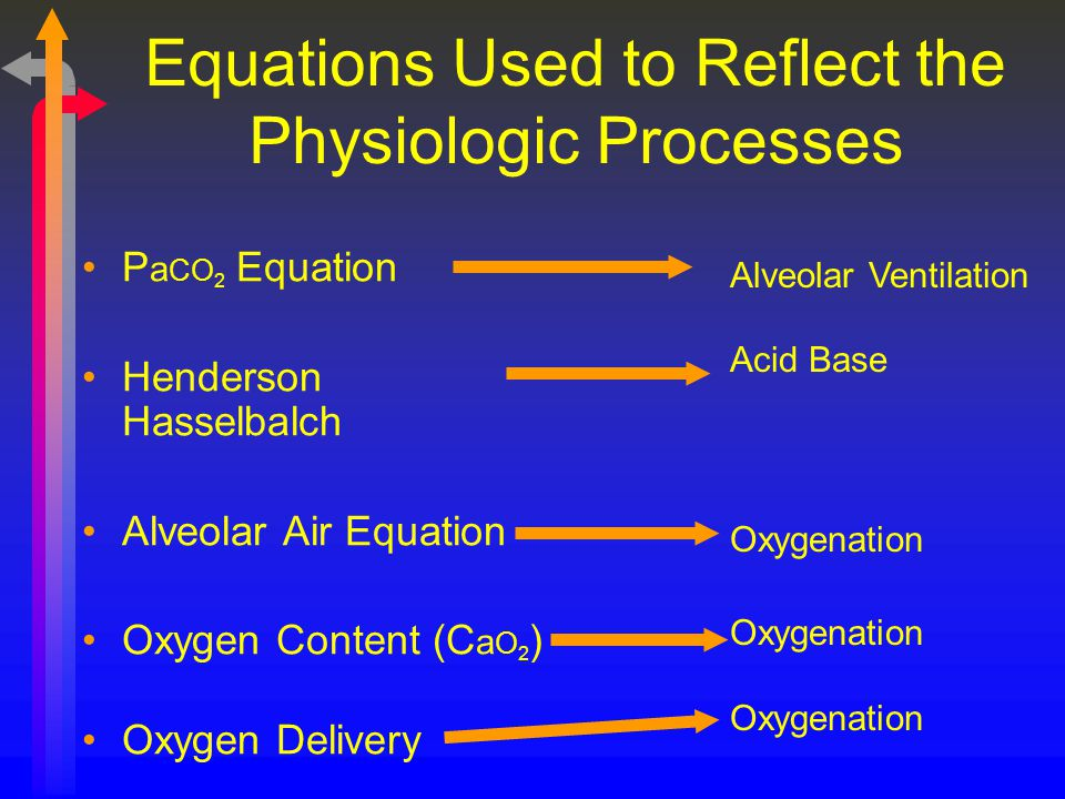 Equations Used to Reflect the Physiologic Processes