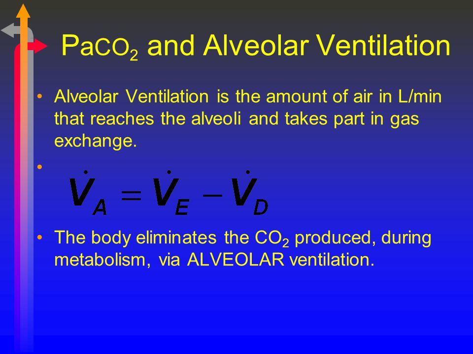 PaCO2 and Alveolar Ventilation