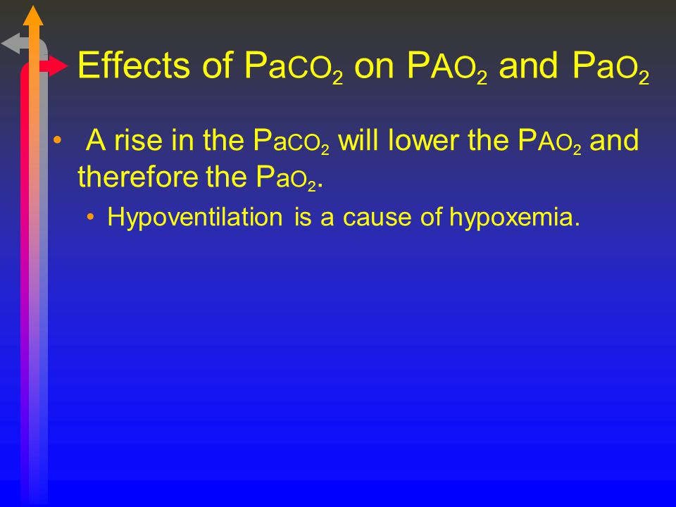 Effects of PaCO2 on PAO2 and PaO2