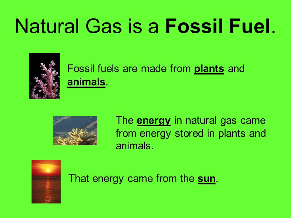 Natural Gas is a Fossil Fuel.