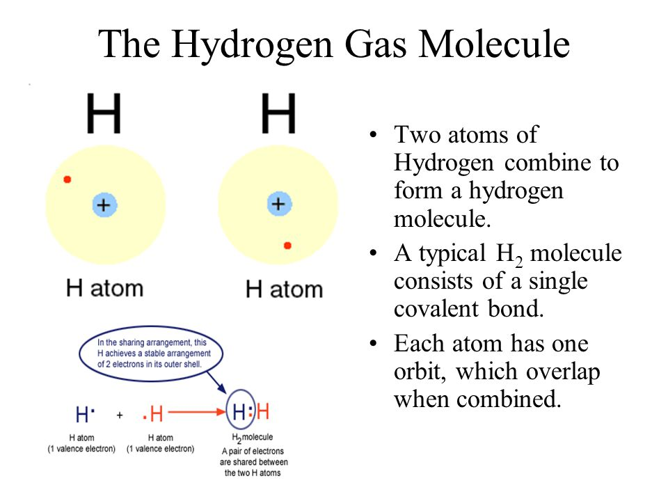 The Hydrogen Gas Molecule