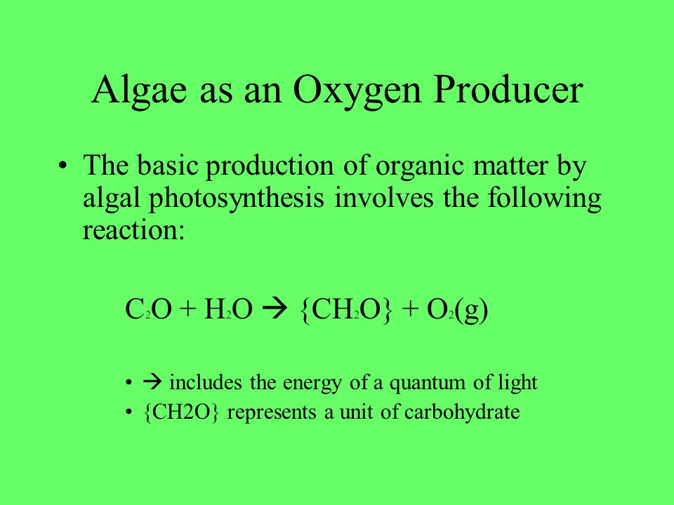 Algae as an Oxygen Producer