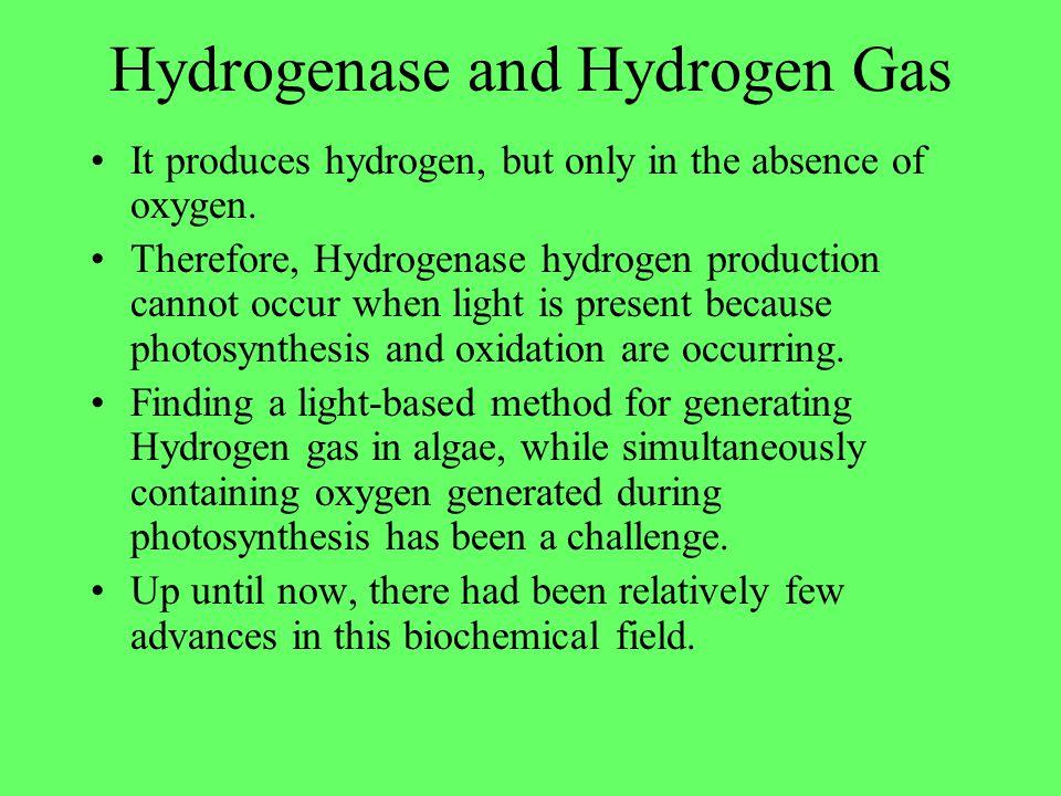 Hydrogenase and Hydrogen Gas