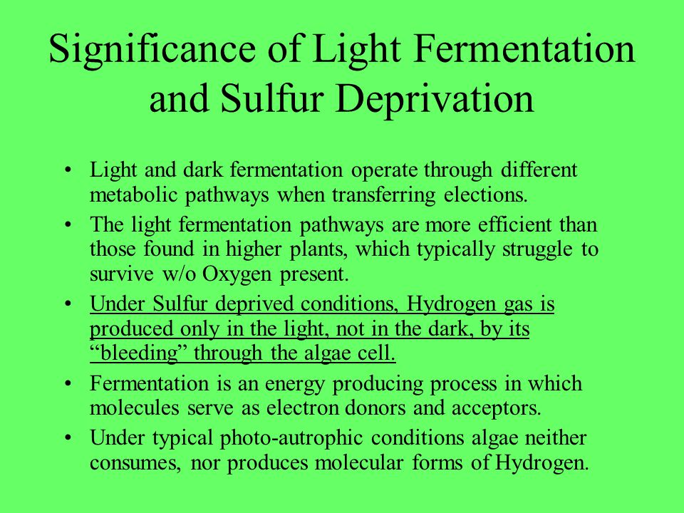 Significance of Light Fermentation and Sulfur Deprivation