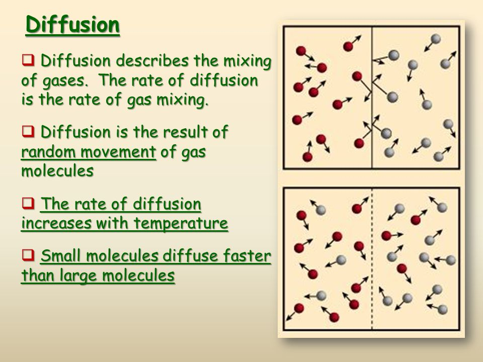 Diffusion Diffusion describes the mixing of gases. The rate of diffusion is the rate of gas mixing.