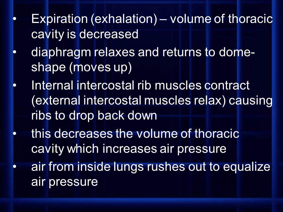Expiration (exhalation) – volume of thoracic cavity is decreased