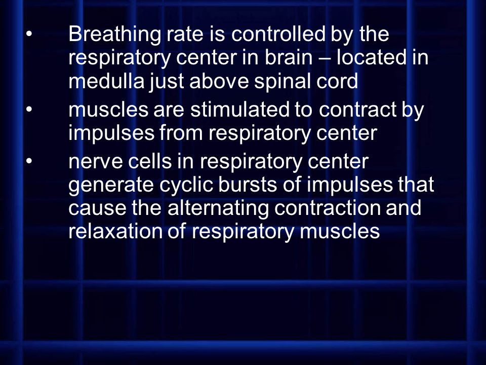 Breathing rate is controlled by the respiratory center in brain – located in medulla just above spinal cord