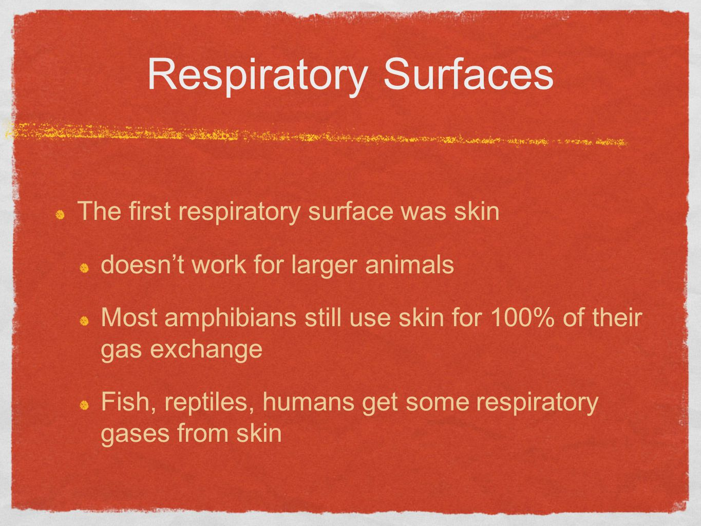 Respiratory Surfaces The first respiratory surface was skin