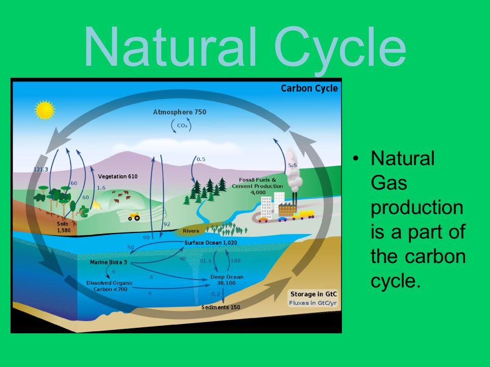 Natural Cycle Natural Gas production is a part of the carbon cycle.