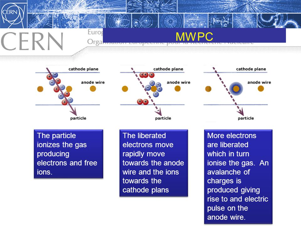MWPC The particle ionizes the gas producing electrons and free ions.