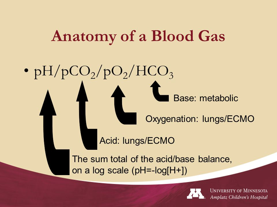 Anatomy of a Blood Gas pH/pCO2/pO2/HCO3 Base: metabolic