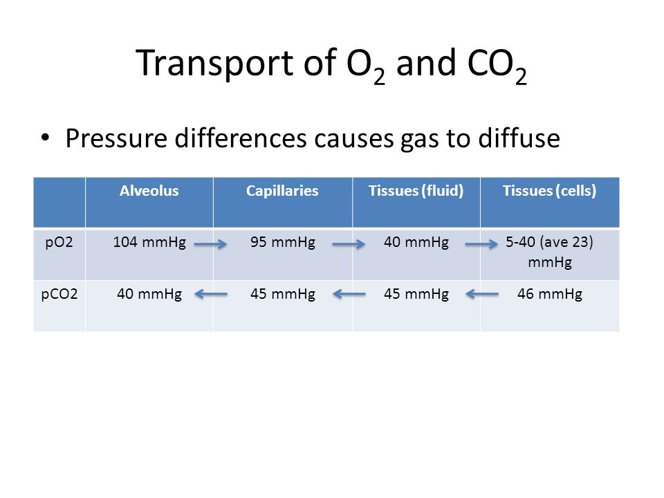 Transport of O2 and CO2 Pressure differences causes gas to diffuse