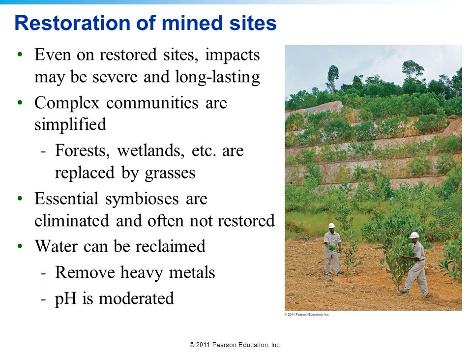 Restoration of mined sites