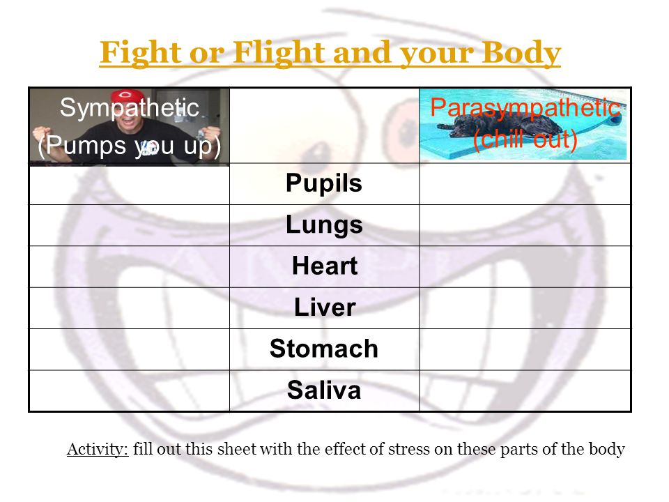 Fight or Flight and your Body