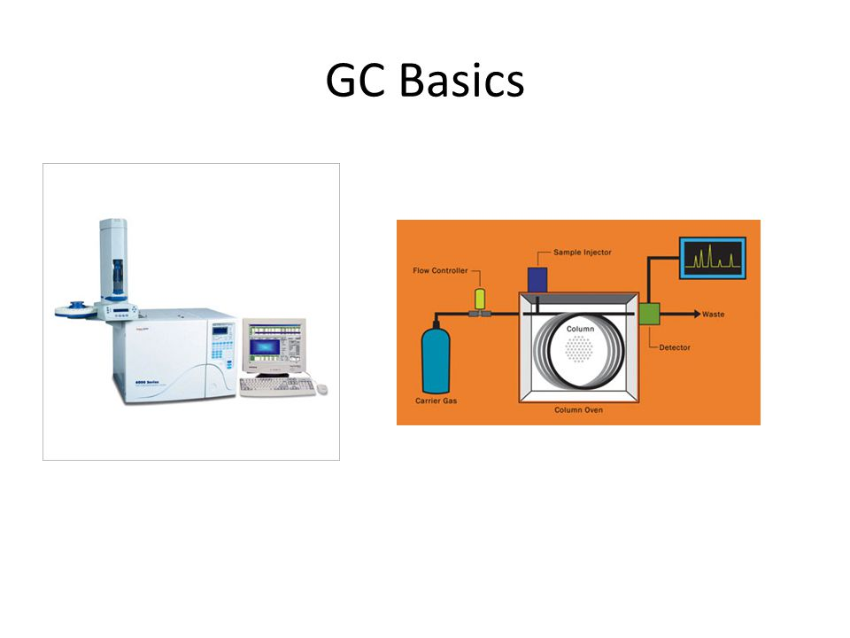 GC Basics