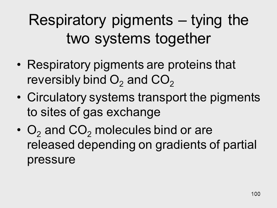 Respiratory pigments – tying the two systems together