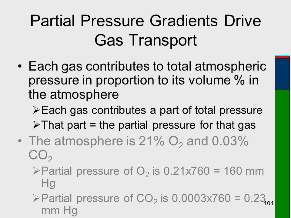 Partial Pressure Gradients Drive Gas Transport