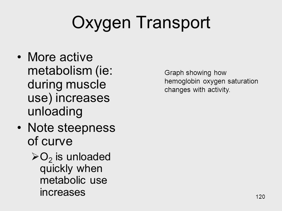Oxygen Transport More active metabolism (ie: during muscle use) increases unloading. Note steepness of curve.