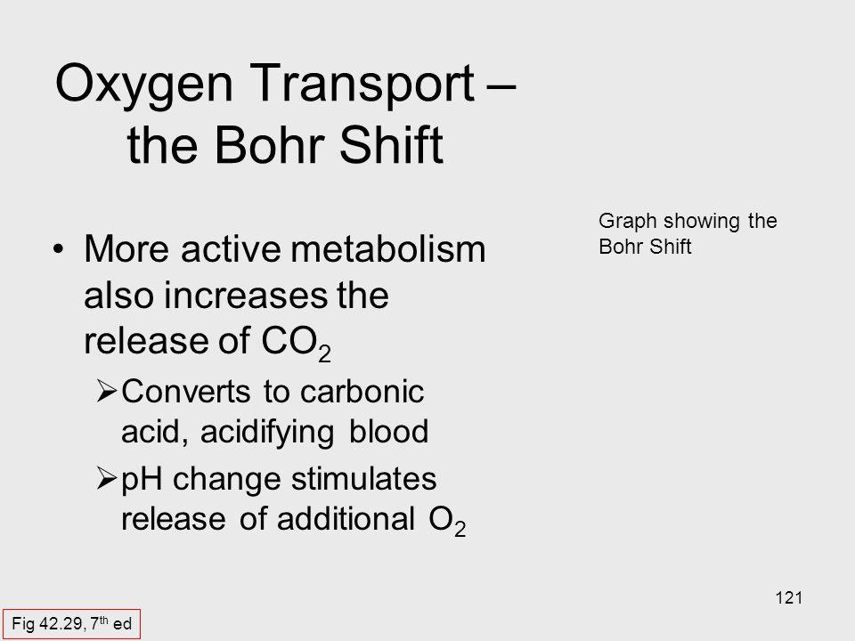 Oxygen Transport – the Bohr Shift