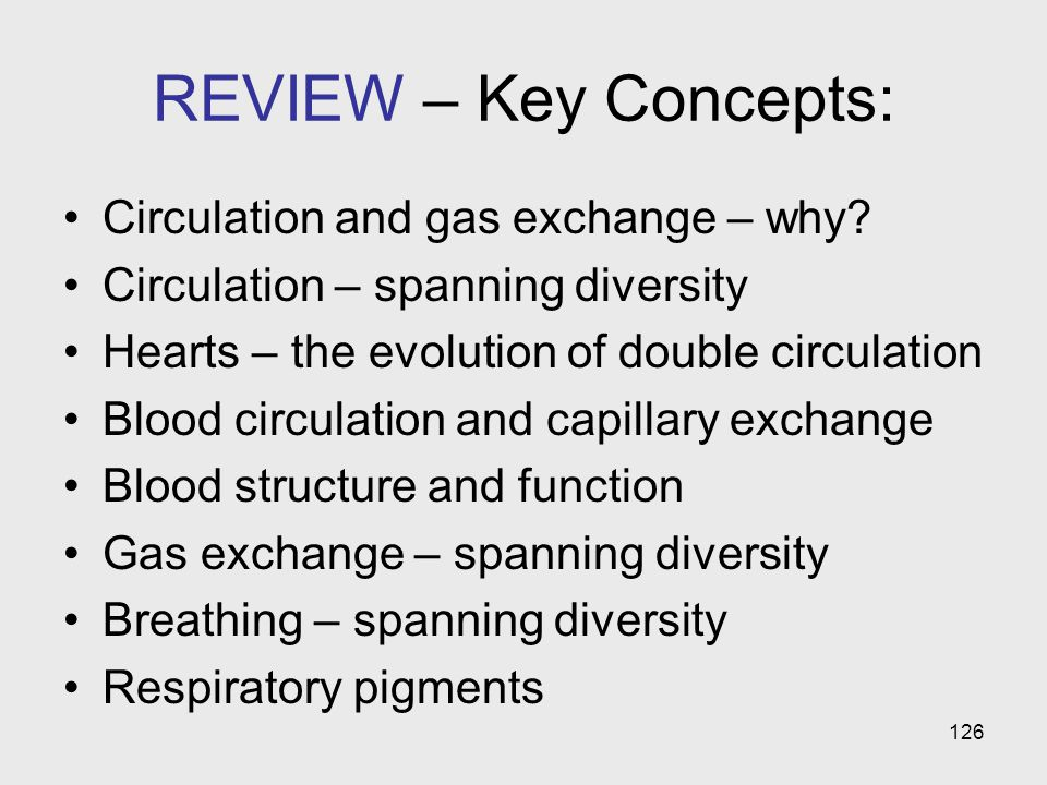 REVIEW – Key Concepts: Circulation and gas exchange – why