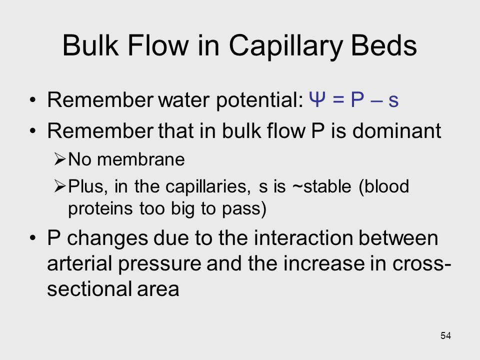Bulk Flow in Capillary Beds