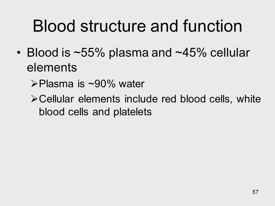 Blood structure and function