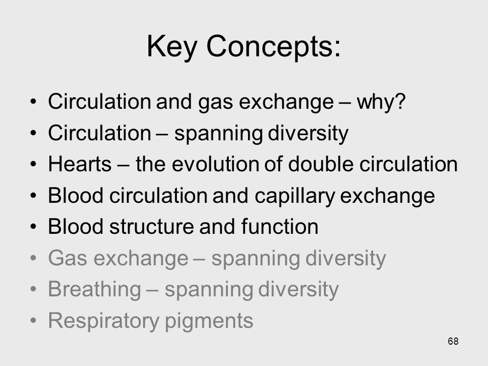 Key Concepts: Circulation and gas exchange – why