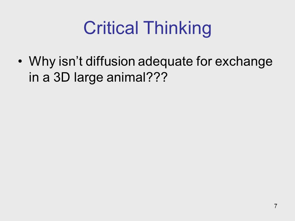 Critical Thinking Why isn't diffusion adequate for exchange in a 3D large animal