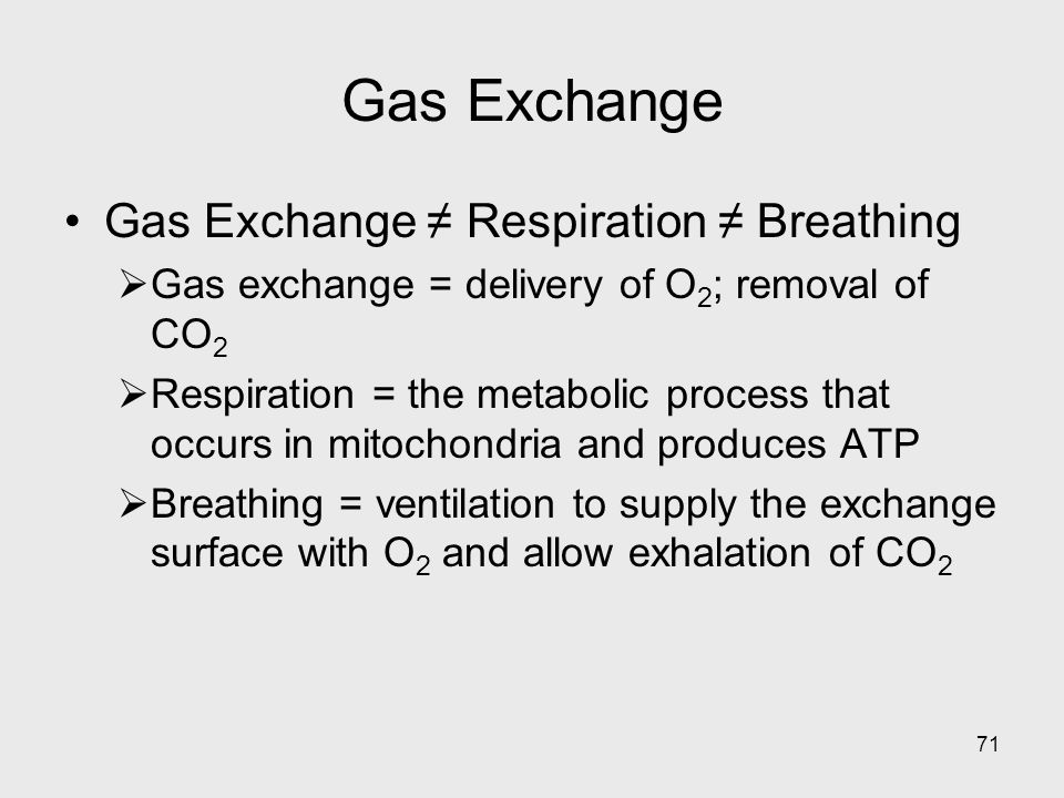 Gas Exchange Gas Exchange ≠ Respiration ≠ Breathing