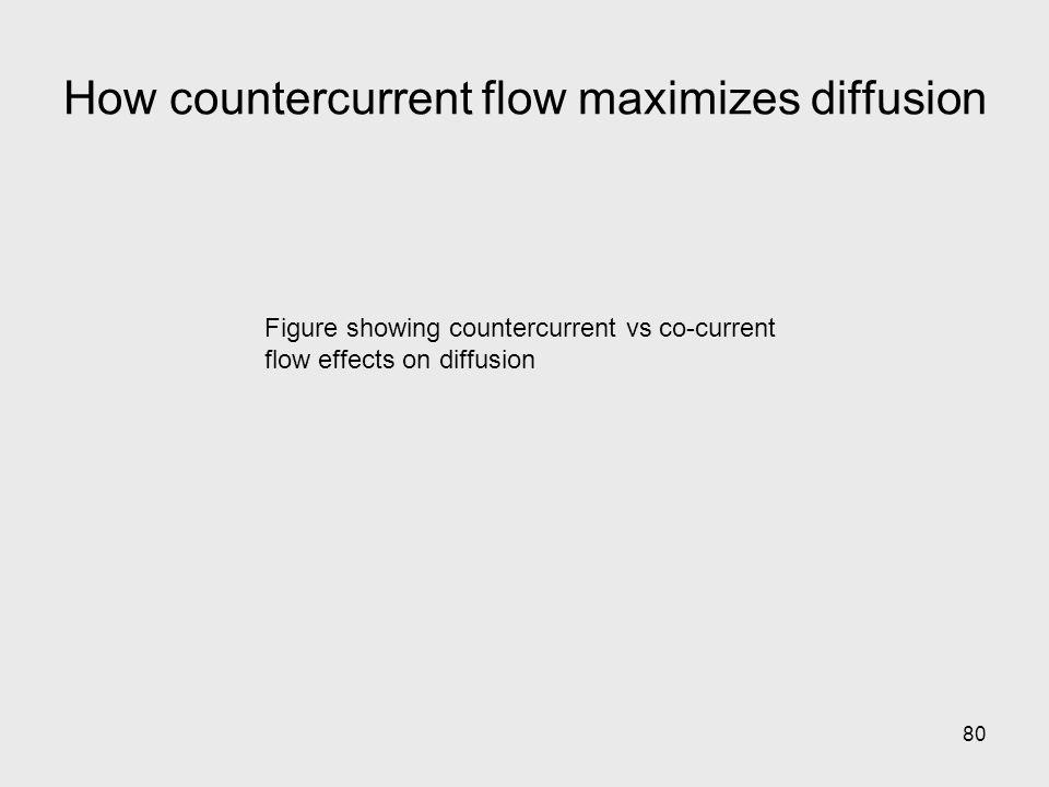 How countercurrent flow maximizes diffusion