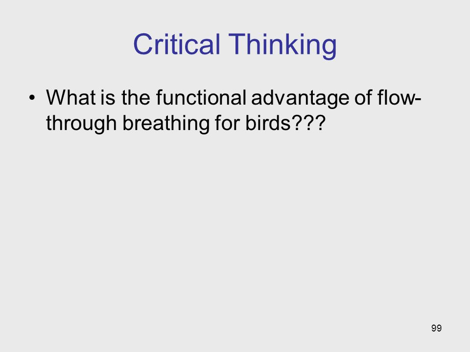 Critical Thinking What is the functional advantage of flow-through breathing for birds