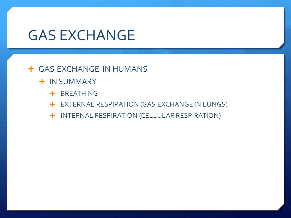 GAS EXCHANGE GAS EXCHANGE IN HUMANS IN SUMMARY BREATHING