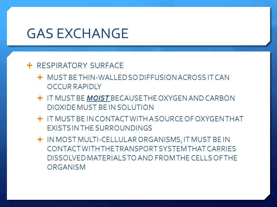 GAS EXCHANGE RESPIRATORY SURFACE
