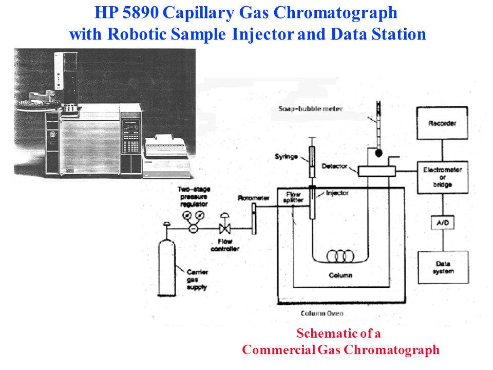 HP 5890 Capillary Gas Chromatograph