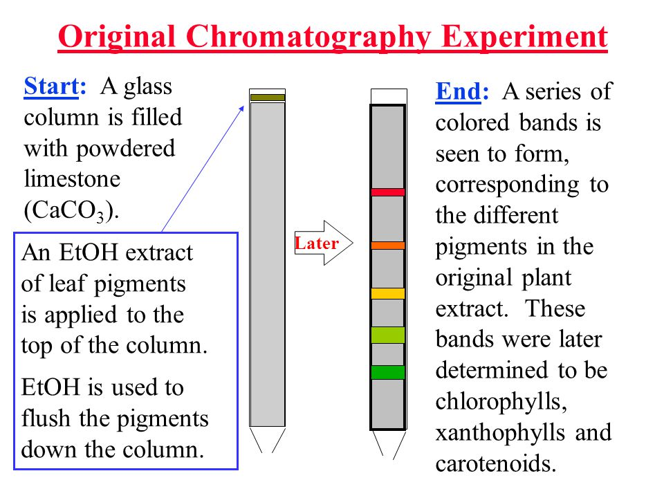 Original Chromatography Experiment