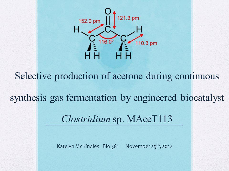 Katelyn McKindles Bio 381 November 29th, 2012