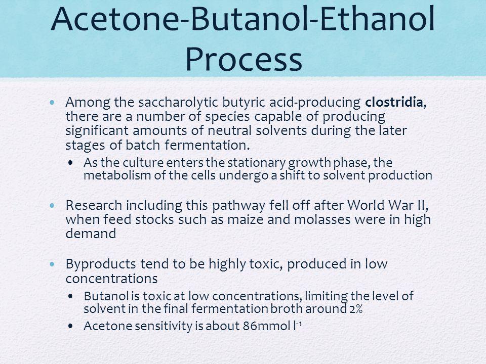 Acetone-Butanol-Ethanol Process