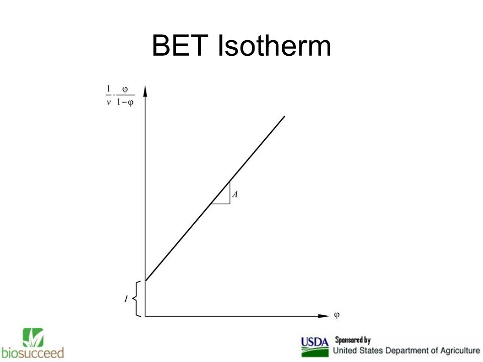BET Isotherm