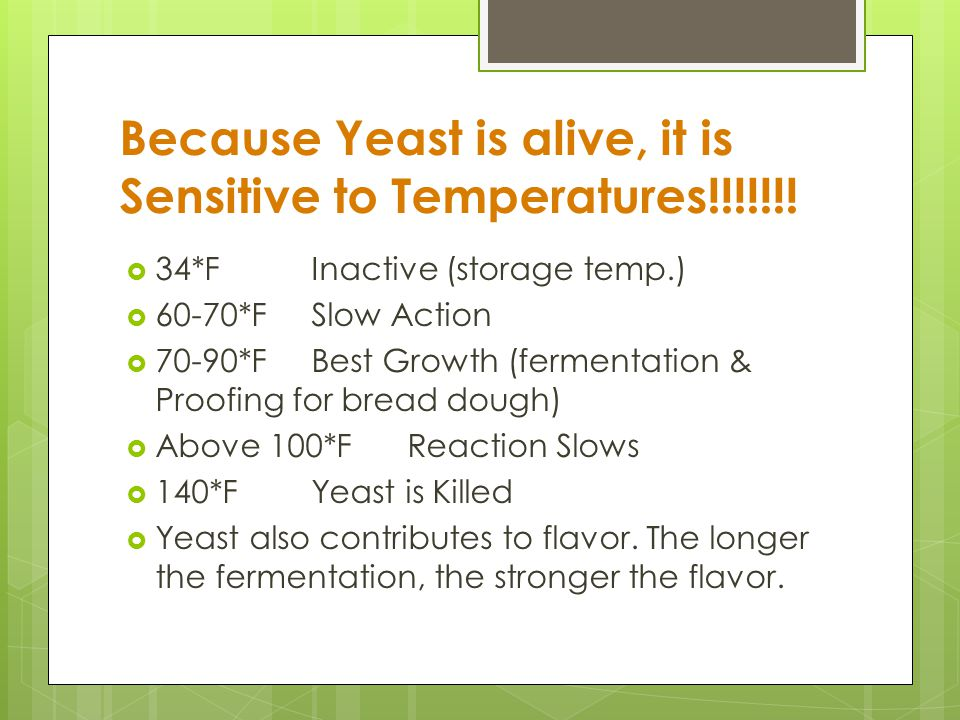 Because Yeast is alive, it is Sensitive to Temperatures!!!!!!!