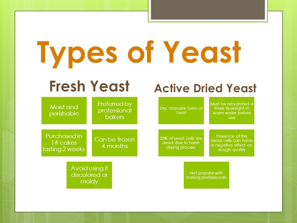 Types of Yeast Fresh Yeast Active Dried Yeast