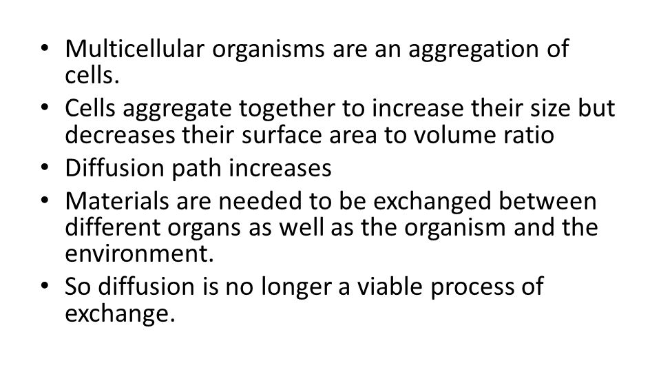 Multicellular organisms are an aggregation of cells.