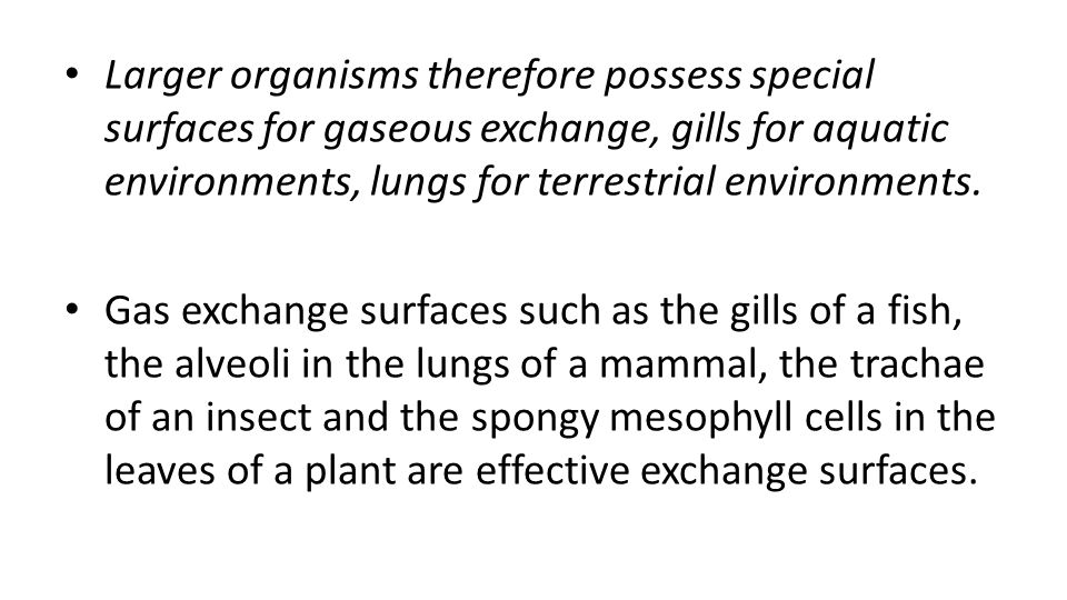Larger organisms therefore possess special surfaces for gaseous exchange, gills for aquatic environments, lungs for terrestrial environments.