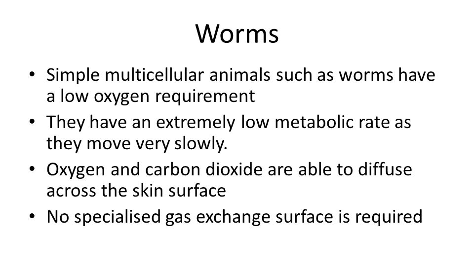 Worms Simple multicellular animals such as worms have a low oxygen requirement. They have an extremely low metabolic rate as they move very slowly.