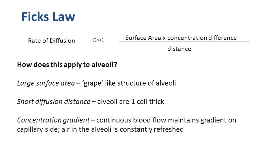 Ficks Law How does this apply to alveoli