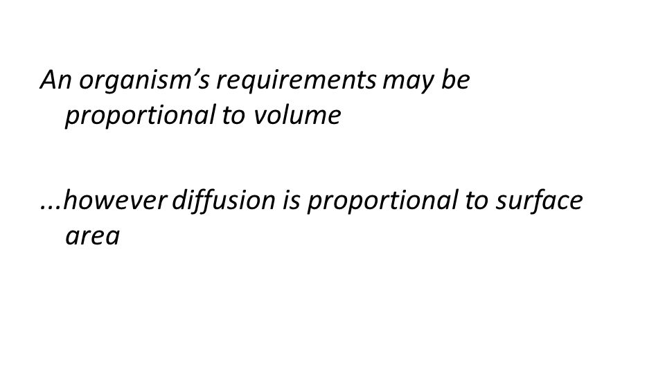 An organism's requirements may be proportional to volume