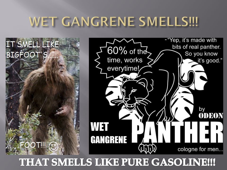 THAT SMELLS LIKE PURE GASOLINE!!!