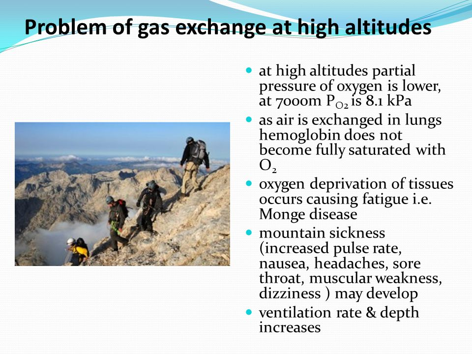 Problem of gas exchange at high altitudes
