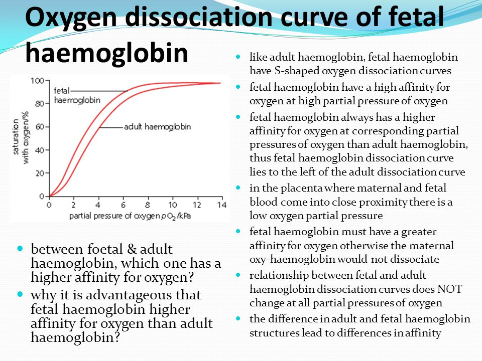 Oxygen dissociation curve of fetal haemoglobin